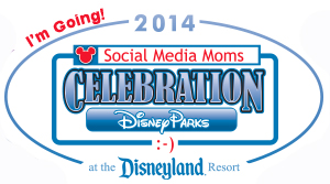 DisneySMMoms2014