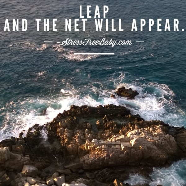 leap and net will appear