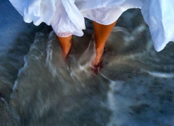 waters edge
