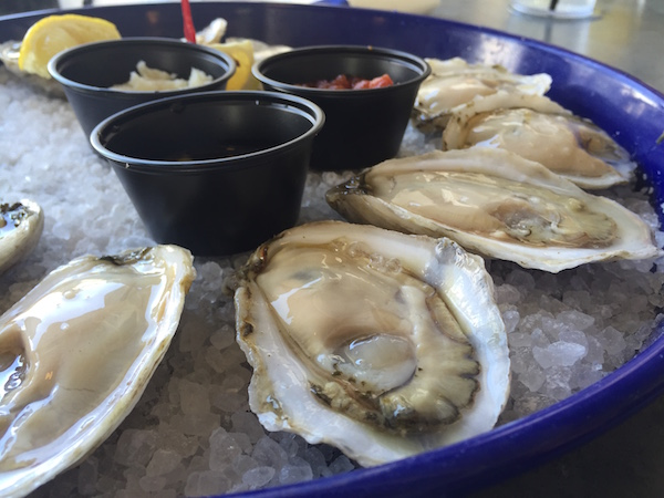 fishers oysters