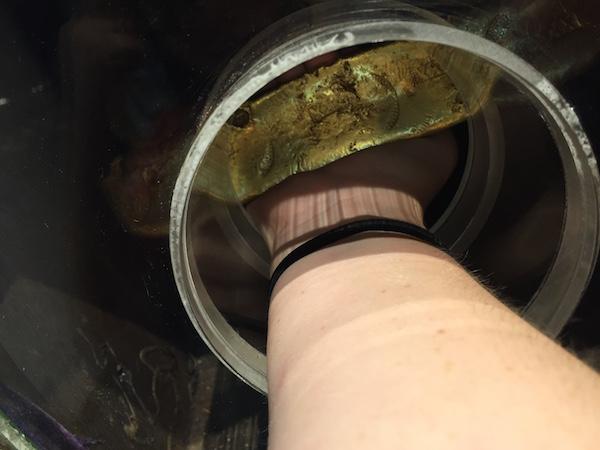 holding gold bar